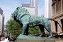 The Art Institute of Chicago, Lion statue, statuary Sculpture, art, artform, bronze, patina, CLCV05P10_16