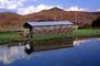 Shed, Reflection, Clouds, pond, autumn, CLKV01P03_12