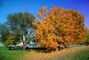 home, house, Building, domestic, domicile, residency, housing, fall colors, Autumn, Trees, Vegetation, Flora, Plants, Woods, Forest, Exterior, Outdoors, Outside, Rural, peaceful, CLKV01P04_08.1728