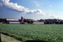 Fields, silo, farm, barn, crop, outdoors, outside, exterior, rural, building, CLWV01P08_19
