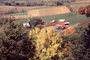 barn, tree, fall colors, Autumn, Trees, Vegetation, Flora, Plants, Colorful, Fields, CMIV01P04_08