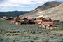 Bodie Ghost Town, CNCV03P08_06