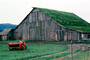 Barn Building, rural, sod roof, grass, CNCV05P14_18