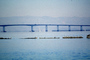 San Mateo Hayward Bridge, Highway-92, CNCV07P01_06