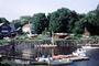 Harbor, Docks, Homes, Trees, Massachusetts, home, house, boats, shore, coast, shoreline, COEV01P13_17