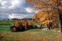 Bucolic Autumn in New England, autumn, Equanimity, COEV02P11_12