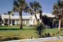 palm tree, home, house, Building, domestic, domicile, residency, housing, Myrtle Beach, Ocean Blvd., Palm Trees, COSV01P10_03