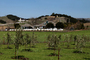 Wine Country, CSCD02_058