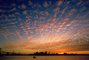 Altocumulus Clouds, Golden Skyline, Puffy Clouds, Skyline, Cumulus Clouds, Sunset, Sunclipse, Dusk, CSFV08P04_10