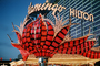 Flamingo Hilton, Night, Nighttime, Neon Lights