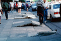 Sidewalk in Upheaval, Curb, Marina district, Loma Prieta Earthquake (1989), 1980's, DAEV02P02_01