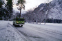 Fire Engine, snow, ice, cold, trees, forest, woodland, road, DAFV03P11_19