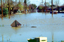 Flooded suburban neighborhood, Homes, Houses, Northern California, DASV02P01_17