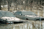 Louisville, Kentucky, Flooded Cars, DASV03P01_16