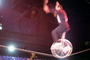 Unicycle, High Wire Act, Wheel