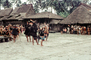 War Dance, Grass Thatched Roof, buildings, Nias, Sumatra, Indonesia, Sod, EDAV03P11_11