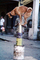 Dog, Balancing on tin cans, Mumbai, ETBV01P05_12