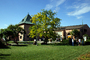 Lawn, Gardens, Peju Winery, Rutherford, FAVD01_134