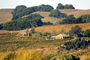 Wooden Barn, Sonoma County, hills, trees, FAVD01_162