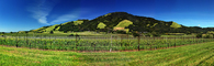 Bennett Valley, Sonoma County, California, Panorama, FAVD01_201