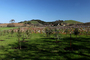 Paso Robles Wine Country, FAVD01_227