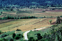 Rows, hills, mountains, Calistoga, FAVV01P15_03