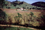 Rows, hills, mountains, Calistoga, FAVV01P15_11