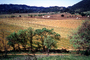 Rows, hills, mountains, Calistoga, FAVV01P15_14