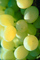 white grape, White Grapes, Grape Cluster