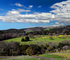 Paso Robles Wine Country, FMND03_072