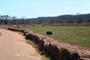 Hay Bales, roll, Arkansas