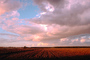 Plowed Field, clouds, FMNV01P08_09.0948