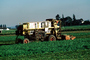 Swather, cutter, Whidbey Island, Windrower, FMNV01P14_05