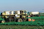 Swather, cutter, Whidbey Island, Windrower, FMNV01P14_12