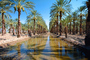 Palm Dates, water, irrigation, trees, desert, Coachella, California, FMNV02P01_17.0948