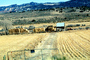 Hay Bale Stacks, Shack, Shed, barn, mountains, dirt road, path, gate, fence