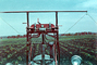 pov from tractor, Pesticide applications, 1940's, Herbicide, Insecticide, FMNV05P04_19
