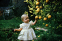Child picking oranges from an orange tree, orchard, 1950's, FMNV07P01_19