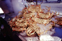 Cooked Dungeness Crabs on Ice, steamed, seafood, shellfish, Fishermans Wharf, FRBV05P15_16