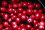 Cranberrie, texture, background, FTFV01P10_01.0953