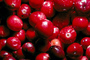 Cranberrie, texture, background, FTFV01P10_04.0953