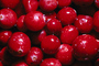 Cranberrie, texture, background, FTFV01P10_05.0953