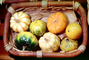 gourds, squash, texture, background, FTFV01P13_11