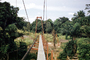 Bridge, Hills, Forest, Water Pipeline, Africa, FWPV01P01_16