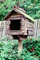 Mailbox, 19500, mail box, bird house, fence, wood, wooden, fence, GCPV01P05_03