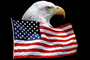 Eagle and Old Glory, Old Glory, USA, United States of America, Star Spangled Banner, GFLV01P09_12