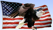 Bald Eagle, Old Glory, USA, United States of America, Star Spangled Banner, USA Flag, GFLV02P04_18