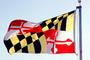 Maryland, State Flag, Fifty State Flags, GFLV02P07_10