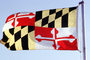 Maryland, State Flag, Fifty State Flags, GFLV02P07_12