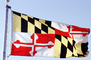 Maryland State Flag, Fifty State Flags, GFLV02P07_13